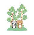 cute bear panda in the garden vector image