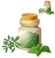 dried herbs detailed icon isolated on vector image vector image