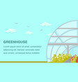 greenhouse plants cultivation web banner template vector image vector image
