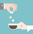 groom put sugar in bridge coffee cup vector image