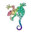 rainbow gecko vector image vector image