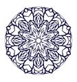 Round kaleidoscopic lace mandala background vector image vector image