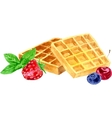 watercolor wafers and berries vector image