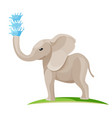 young baby elephant blows water out of trunk vector image vector image