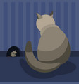 a gray domestic cat watches the mouse at her hole vector image vector image