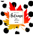 autumn sale banner with colorful fall leaves vector image