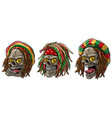 cartoon jamaican rasta skulls with dreadlocks vector image