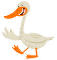 cute goose animal character vector image vector image