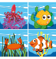 Different kind of sea lives vector image