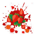 strawberry fruit logo watercolor splash design vector image