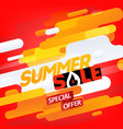 summer sale special offer abstract background vector image