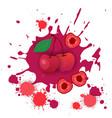 cherry fruit logo watercolor splash design fresh vector image
