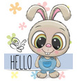 cute rabbit isolated on a white background vector image vector image