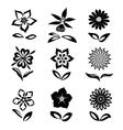 Flower set Black silhouettes on white background vector image
