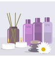 set for spa treatments with vector image
