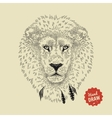 sketch of a lion face Lion head front vector image