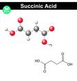 Succinic acid molecule vector image vector image