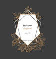 template nature frame geometric vector image vector image