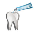 tooth with toothpaste vector image