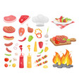 bbq set meat for barbecue and spice icon vector image vector image