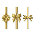 collection decorative golden bows with vertical vector image vector image