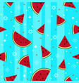 colorful fresh watermelon fruits seamless summer vector image vector image