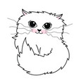 hand drawn cute white cat isolated on white vector image vector image
