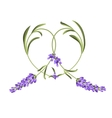 heart frame lavender flower vector image vector image