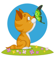 kitten and butterfly vector image