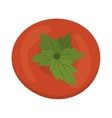 red tomato vegetable vector image vector image