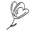 single doodle outline flower leaf plant twig vector image vector image