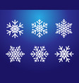snowflakes line set white color on blue vector image