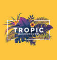 tropical background with frame 2 vector image vector image