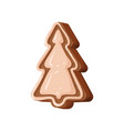 gingerbread christmas cookie traditional festive vector image