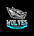 logo identity for sports vector image vector image