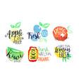 natural fresh juice bright labels set eco bio vector image
