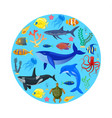 ocean animals on blue background vector image vector image