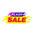 spesial offer flash sale tags shopping discount2 vector image