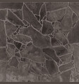stone or irregular slate wall floor vector image vector image