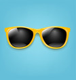 summer sunglasses with mint poster vector image vector image