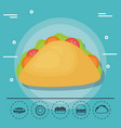 taco for family summer picnic vector image