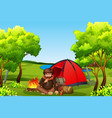 young mancamping in forest vector image