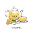 ginger tea - healthy hot drink in glass teapot and vector image vector image