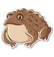 sticker design with cute toad isolated vector image vector image