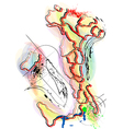 abstract multicolor map of Italy vector image