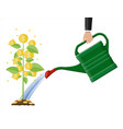 businessman hand watering money coin tree with can vector image