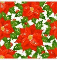 christmas flowers vector image
