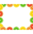 Citrus frame vector image vector image