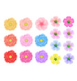 colored flowers of three kinds on a white vector image vector image