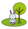 cute and tender rabbit in the park character vector image vector image